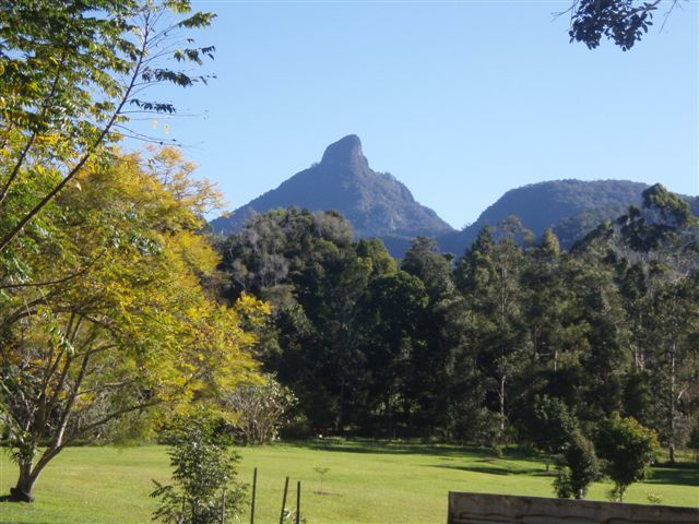 mount warning Byron Hinterland