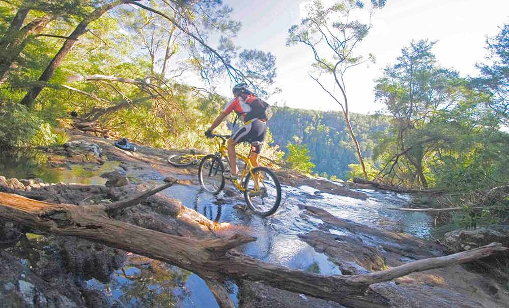 Mountain Biking Byron Hinterland